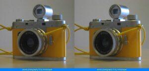 3d-minox wiggled stereogram