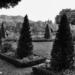 Erlacherhof Terrace - Berne in Black & White