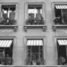 Summery Windows - Berne in Black & White