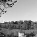 Felsenburg & Rosengarten - Berne in Black & White