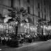 Kornhauskaffee - Berne by Night in Black And White