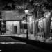 Minsterplattform with Senkeltram - Berne by Night in Black And White