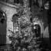 Xmas Tree in Gerechtigkeitsgasse - Berne by Night in Black & White