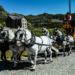 Gotthard Postkutsche - Legendary Post Carriage San Gotthard - Carrozza Postale Passo San Gottardo