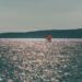 Loneley Surfer in the Evening Light - mediterranean spirit