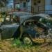 Disused Black VW Beetle - Hidden Vintage Car