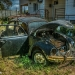 Disused Black VW Beetle - Hidden Vintage Car