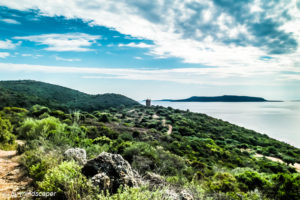 Mediterranean Coast with Mediaval Tower - Landscapes