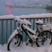 Snowed Bicycle - Winter Time