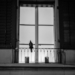 Bird in Front of the Lightened Window - Animal Photography in Black & White