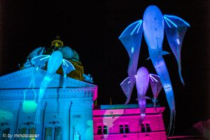 Flying Fishes at Bundeshaus - Museumsnacht Bern 2018