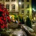 Flowered Venner Fountain by Night