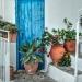 Blue Door - Mediterranean Still Life