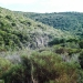 Mediterranean Coastal Area Nature in Autumn