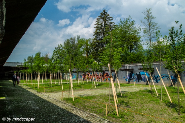 Tree Garden in Former Sewage Plant - Uferpark Attisholz