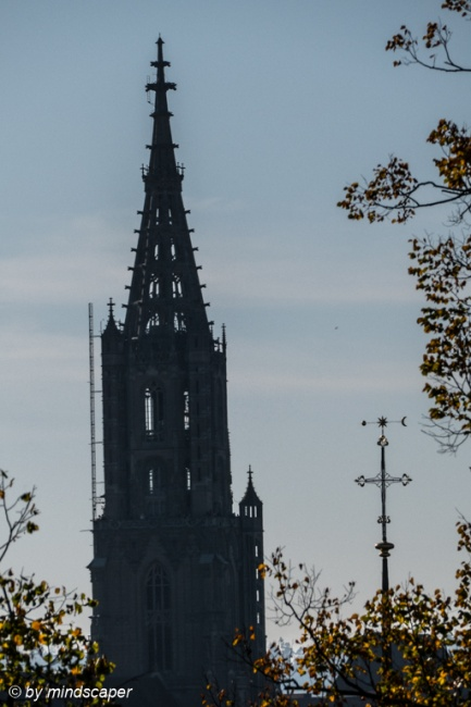Berne Minster Tower and Nydegg Church Cross with Autumn Leaves