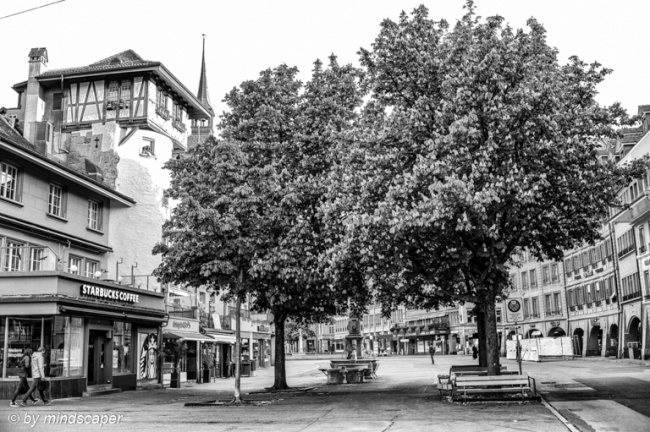 Holländerturm with Spring Trees - Berne in Black & White 7