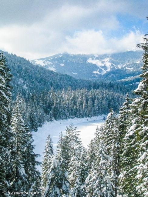 Snowed Alpine Landscape