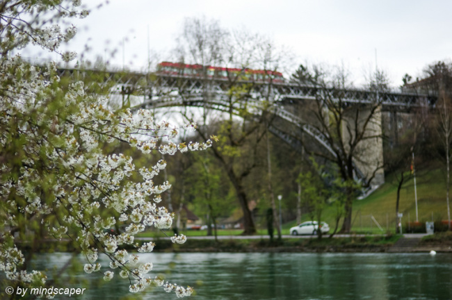 Spring Time at Kirchenfeld-Bridge