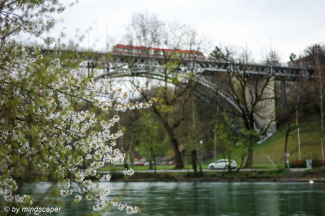 Spring Time at Kirchenfeld-Bridge
