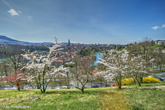 Berne Skyline in Spring - Seen From Rosengarten