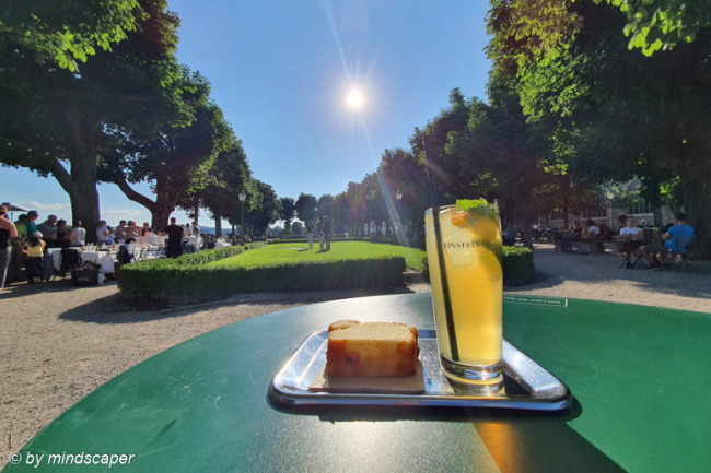 A Sunny Einstein Jardin Icetea with Cake