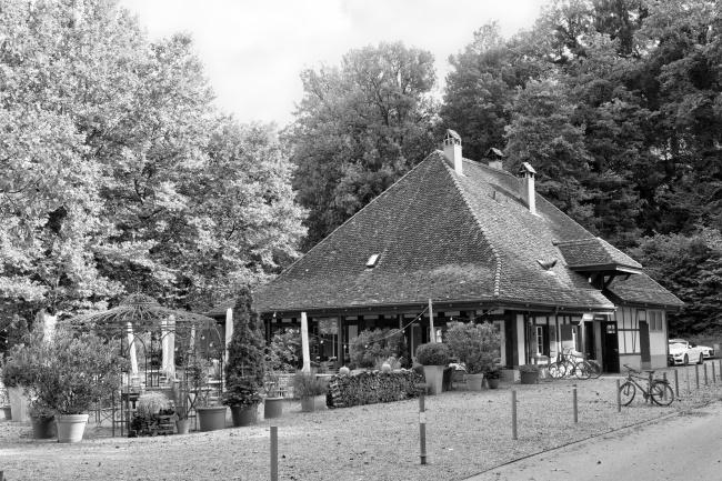 Old House at Schwellenmätteli