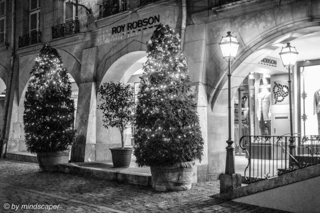 Xmas Trees and Lantern in Black & White