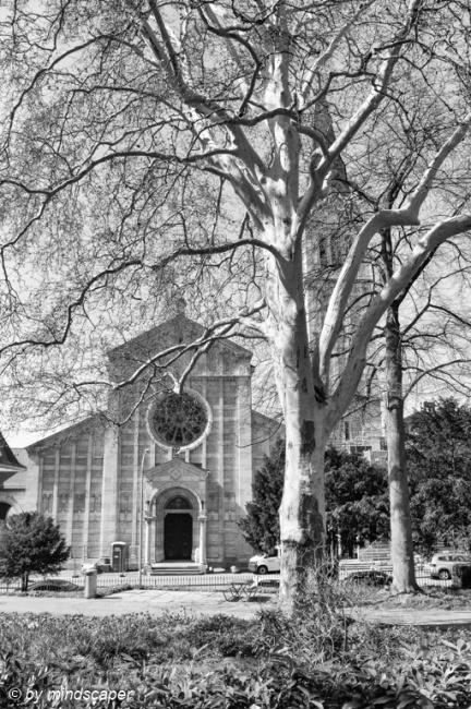Trinity Church on Spring Morning - Berne in Black & White